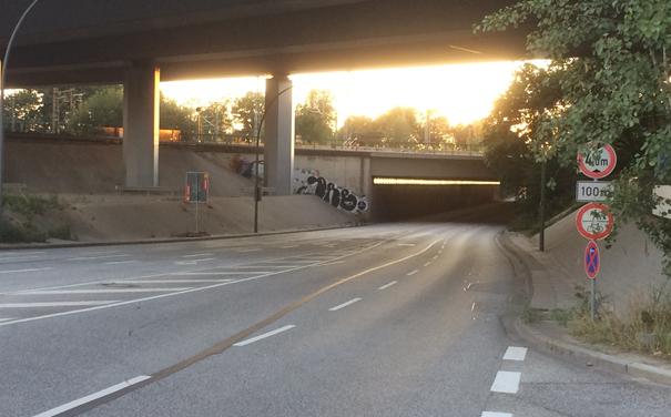 """Die Veloroute Elmshorn-Hamburger Innenstadt / Schömer: """"Hier hört der Sachverstand auf und die Ideologie beginnt!"""""""