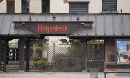 Antrag: Hagenbeck darf nicht sterben